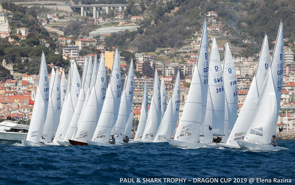 Dragoni Paul e Shark Trophy 2019 01