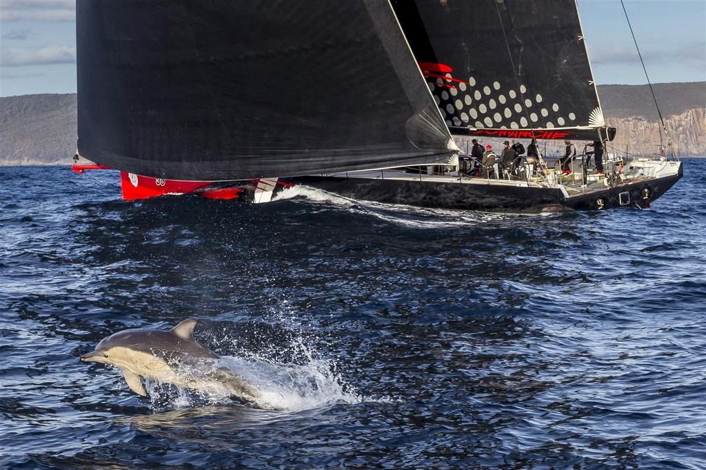 Sydney Hobart Race 2015 arrivi 01