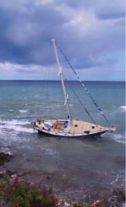 tabaluga vela spiaggiata brindisi